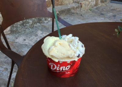 Dino Ice-cream – a well-earned treat